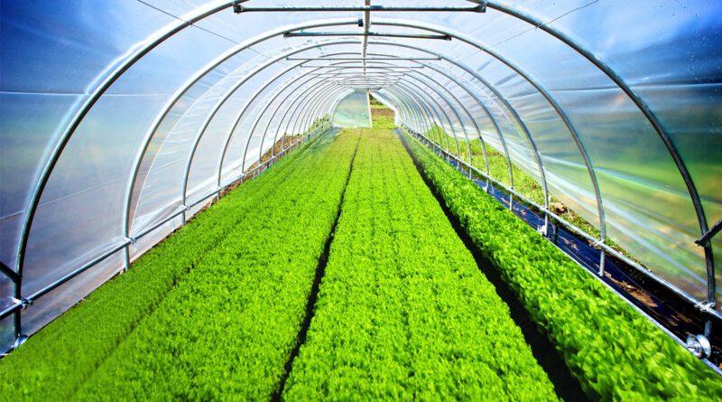हाईटेक पाइप्स ने पॉली हाउस में जैविक खेती को बढ़ावा देने के लिए चलाया जागरूकता अभियान